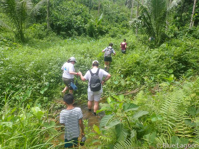 rando jungle-5070038